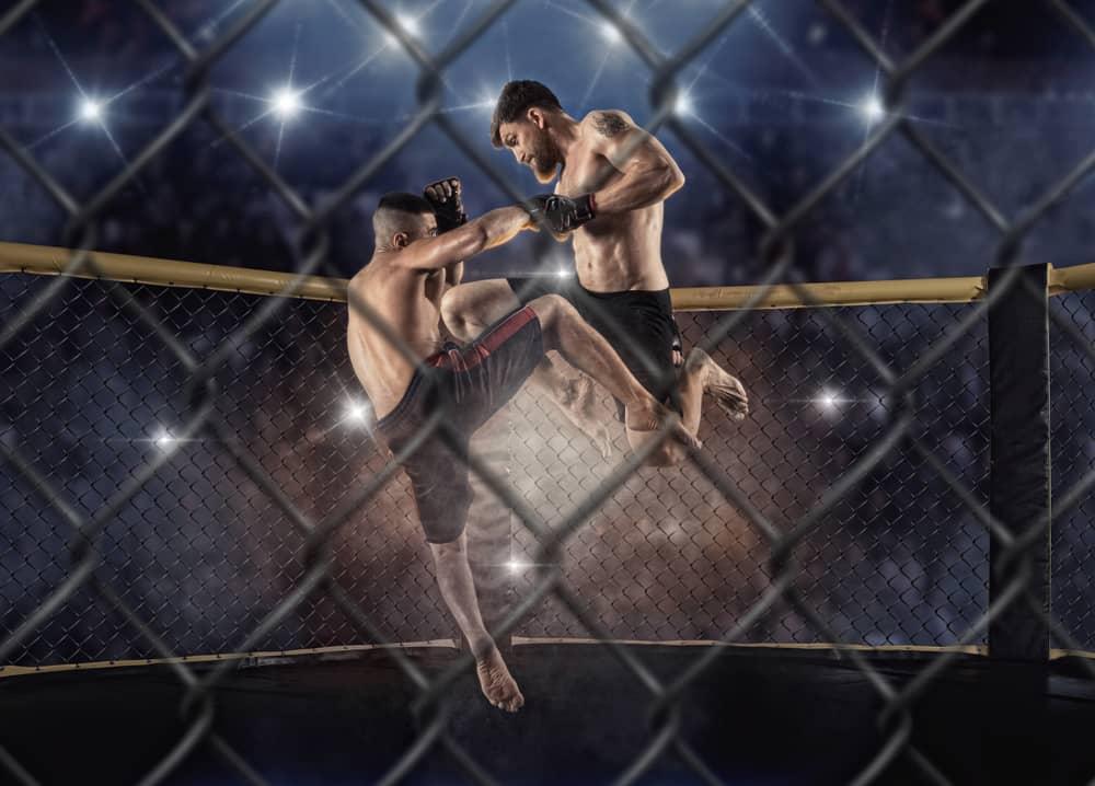 UFC WEtten & MMA Wetten